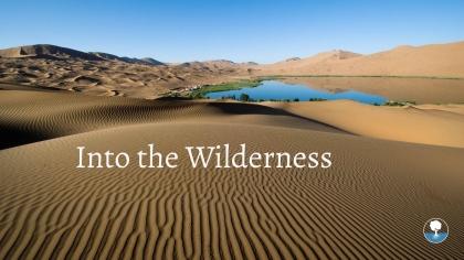 Into the Wilderness.jpg