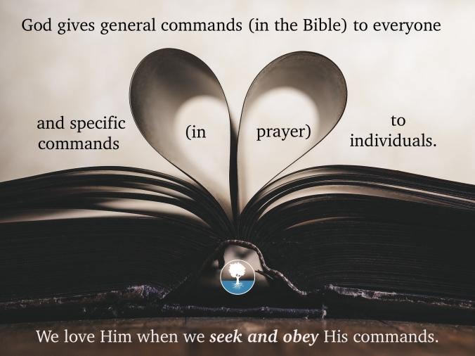 Seek and Obey